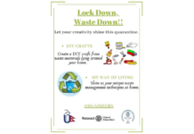 lockdown-wastedown