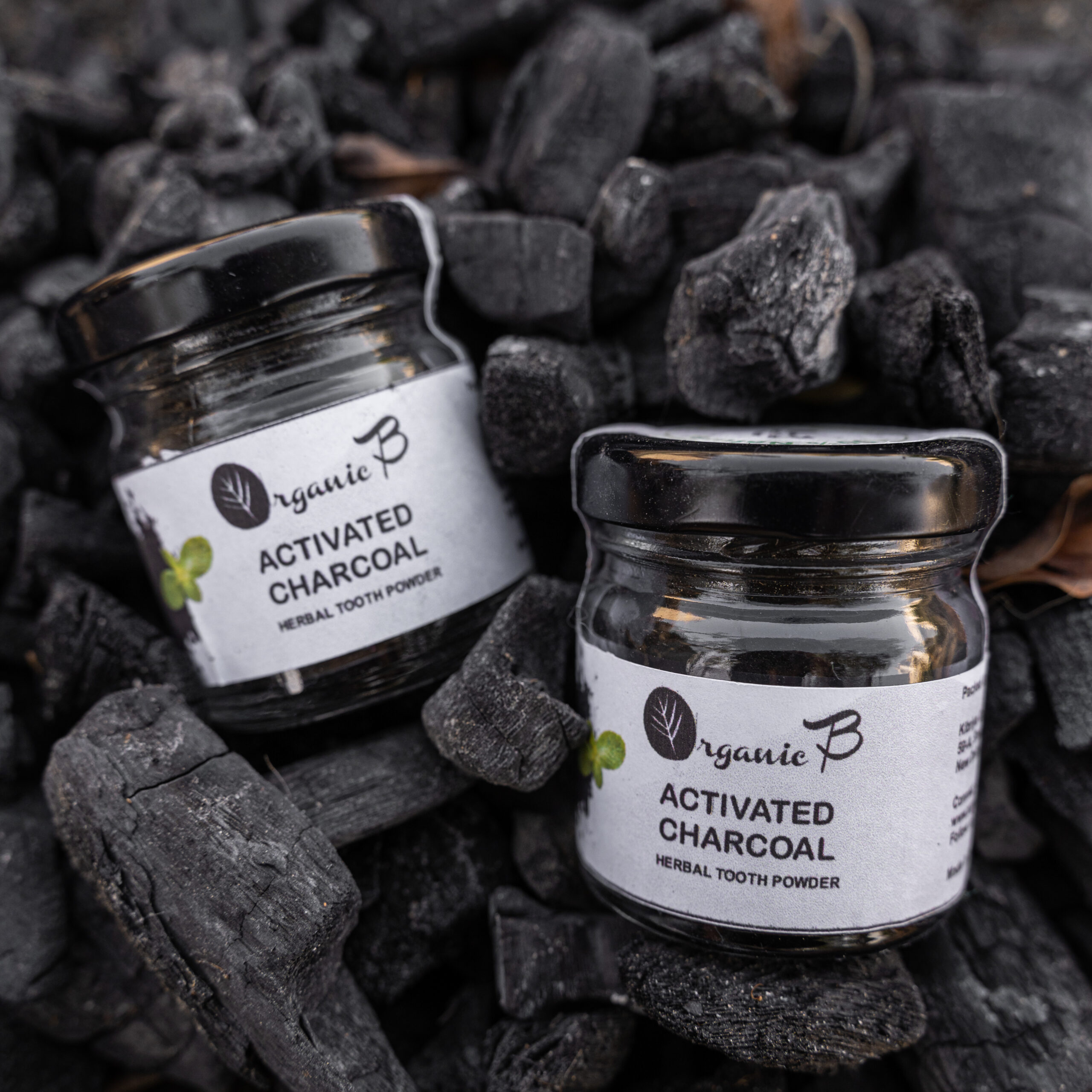 Charcoal Tooth Powder from Organic B